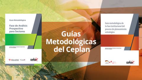 Guías Metodológicas: Fase Institucional y Fase de Análisis Prospectivo para Sectores