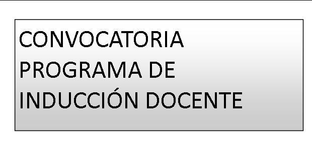 CONVOCATORIApucp