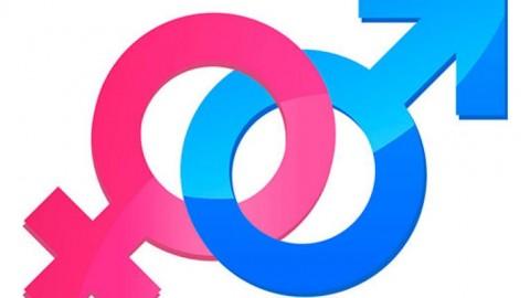 Estado del debate de género