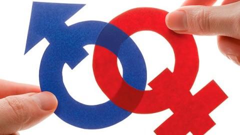 Relevancia de la igualdad de género en la educación actual, un artículo de Fanni Muñoz