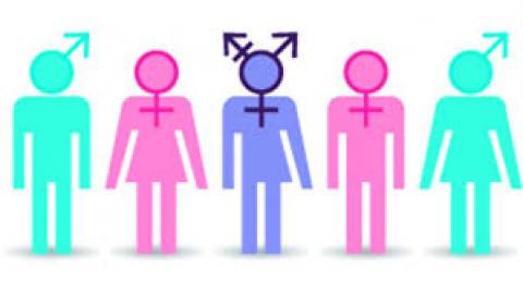 Educación y género: ¿qué está en juego?, un artículo de César Guadalupe