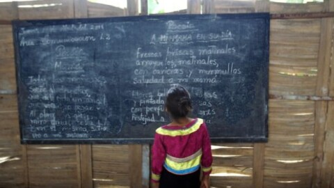 Embarazo adolescente y educación, un artículo de Oswaldo Molina