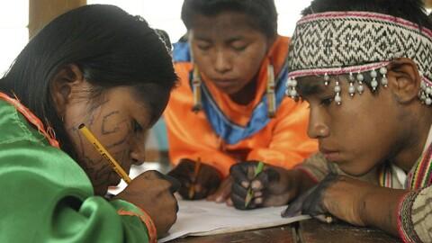 Desafío ante el Bicentenario: brindar servicios públicos en lenguas indígenas, un artículo de Elena Burga