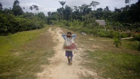 Informe Domingo de La República: Los que no aprenden en casa